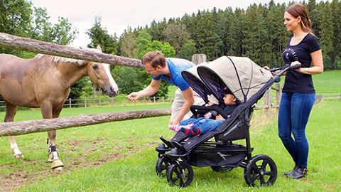 Zwillingswagen in der Wiese mit Pferd