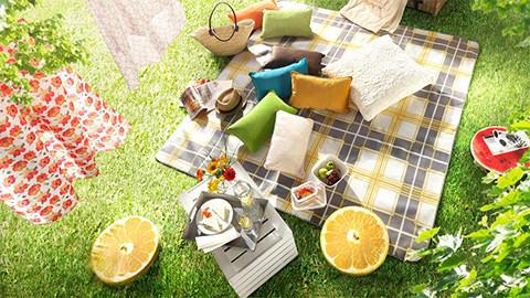 kissen-auflagen-picknick_se