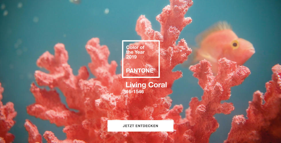 Coral Living