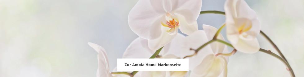 Zur Ambia Home Markenseite