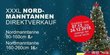 XXXL Nordmanntannen-Direktverkauf