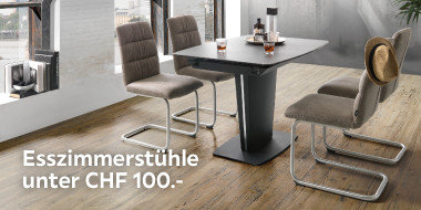 Esszimmerstühle unter CHF 100.-