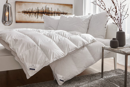 Billerbeck Kissen Bettdecken Entdecken Xxxlutz