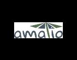 Amatio