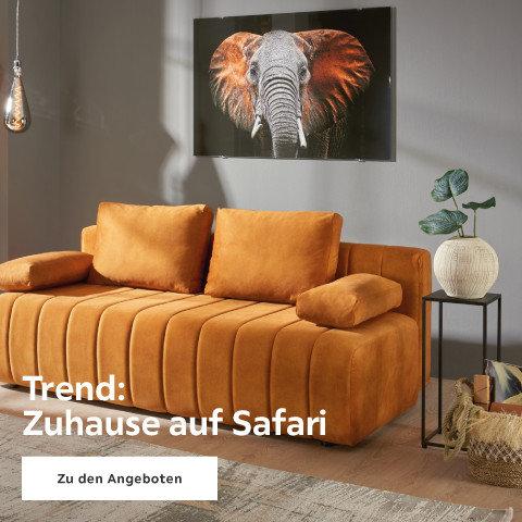 Trend: Zu Hause auf Safari