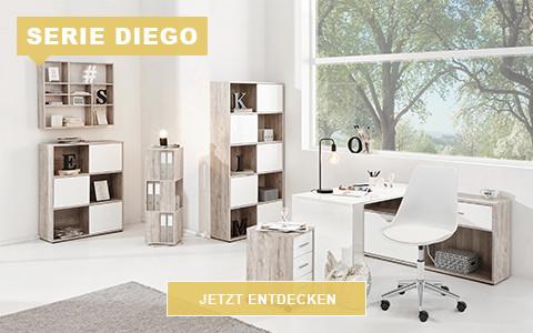 WS_Arbeitszimmer_Diego_480_300