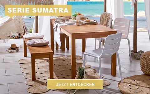 366-2-19-WEB-XXXL-Garten-Sumatra-480x300px-KW06