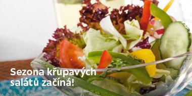 Sezóna salátů začíná