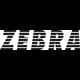 Zebra Süd