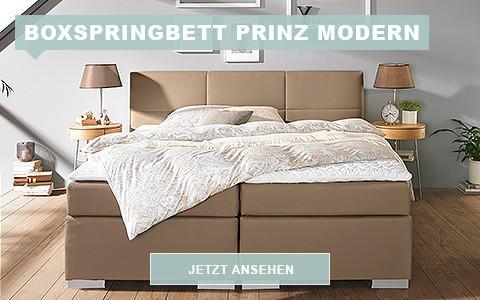 wi_sw_design_prinz_modern_480_300