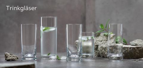 Trinkgläser Schott und Zwiesel