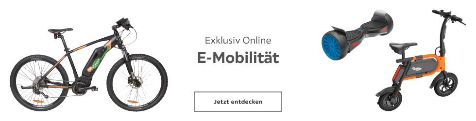 E-mobilität - Exklusiv online
