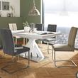 Elegantan stol i stolice Lesnina XXXL