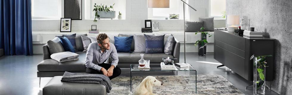 Pohištvo v sivih tonih, z dodatki v modri barvi