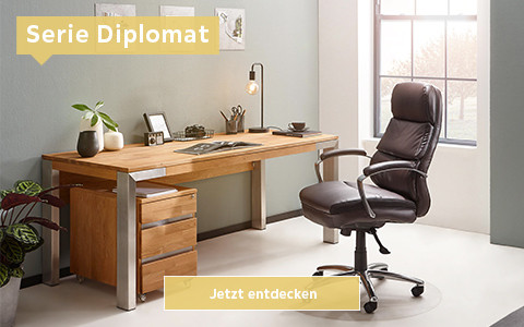 WS_Arbeitszimmer_Diplomat_480_300