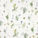 DEKOSTOFF per lfm blickdicht  - Multicolor, LIFESTYLE, Textil (155cm) - Landscape