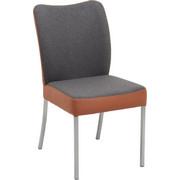 STUHL in Leder, Metall, Textil Dunkelgrau, Kupferfarben - Edelstahlfarben/Dunkelgrau, Design, Leder/Textil (46/89/63cm) - Bert Plantagie