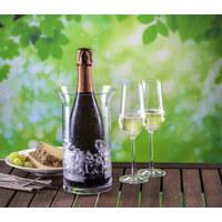 Champagnerglas-Set - Klar, Basics, Glas - Schott Zwiesel