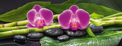 Pflanzen, Steine, Wasser, Zen Glasbild