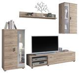 WOHNWAND in Eichefarben, Alufarben  - Eichefarben/Alufarben, Design, Holzwerkstoff/Kunststoff (232/175/42cm) - Carryhome