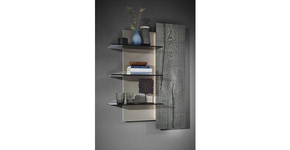 WOHNWAND in Grau, Eichefarben, Fango  - Edelstahlfarben/Fango, Design, Glas/Holz (339,5/195,4/41,2cm) - Dieter Knoll