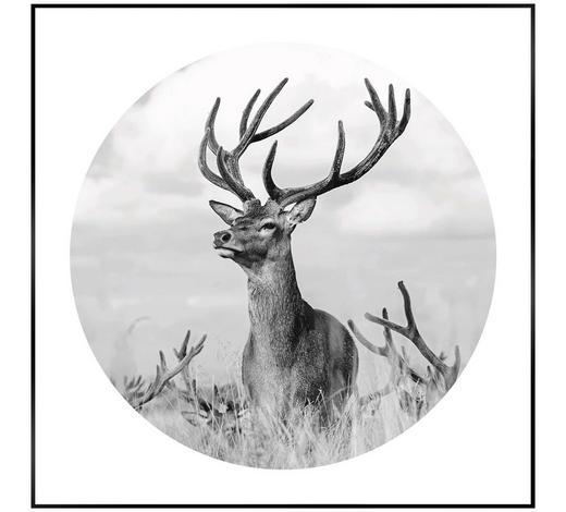 BILD - Schwarz/Weiß, LIFESTYLE, Holzwerkstoff (50/50/2cm) - Reinders Next