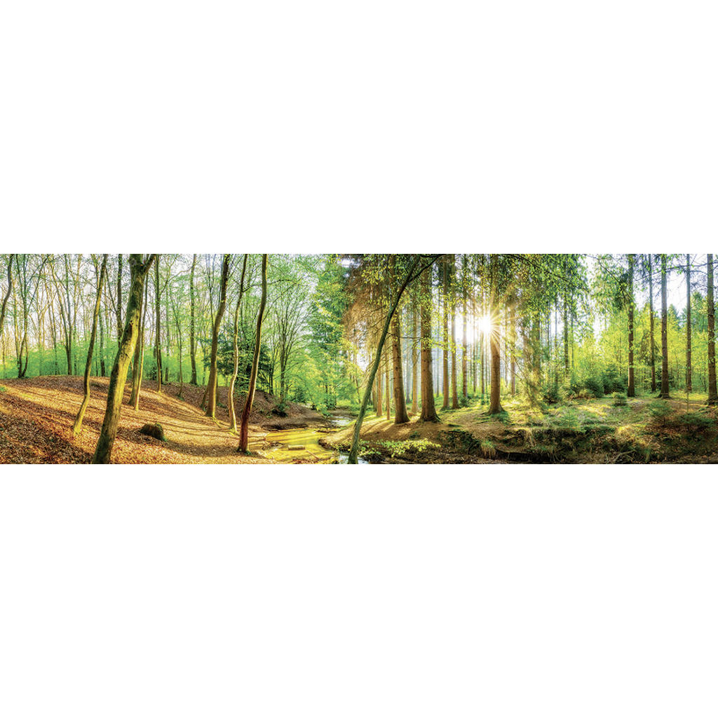 Euroart Acrylglasbild landschaft & natur