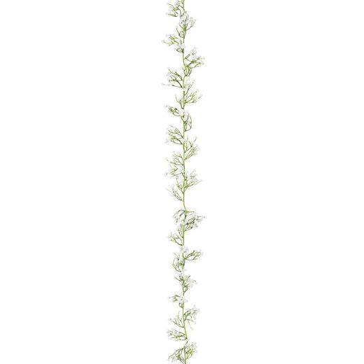 KUNSTPFLANZE - Weiß/Hellgrün, Trend, Kunststoff (185cm)