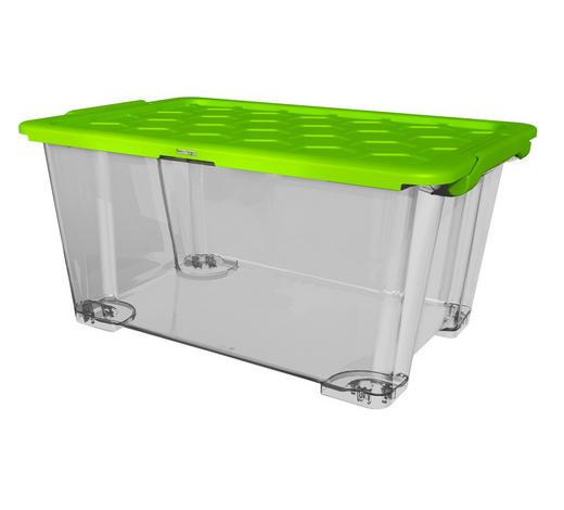 BOX MIT DECKEL 59/39,5/28 cm - Transparent/Grün, KONVENTIONELL, Kunststoff (59/39,5/28cm) - Rotho