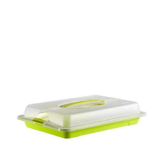 UMĚLOHMOTNÝ BOX - limetková/průhledné, Basics, umělá hmota (43,5/29,5/9cm) - Rotho