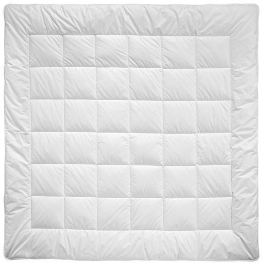 CELOLETNA PREŠITA ODEJA - bela, Basics, tekstil (200/200cm) - Billerbeck