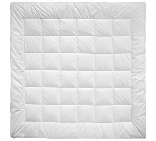 PŘIKRÝVKA CELOROČNÍ, 200/200 cm, polyester - bílá, Basics, textil (200/200cm) - Billerbeck