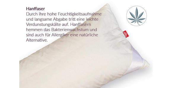 KOPFPOLSTER 40/80 cm  Hanf Vegan  - Naturfarben, Natur, Naturmaterialien/Textil (40/80cm) - Sleeptex