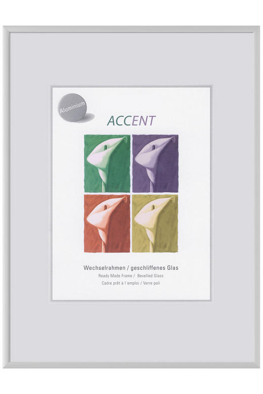 BILDERRAHMEN  Silberfarben - Silberfarben, Metall (18/24cm)