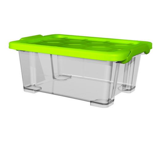 BOX MIT DECKEL - Transparent/Grün, KONVENTIONELL, Kunststoff (39,3/28,3/16cm) - Rotho