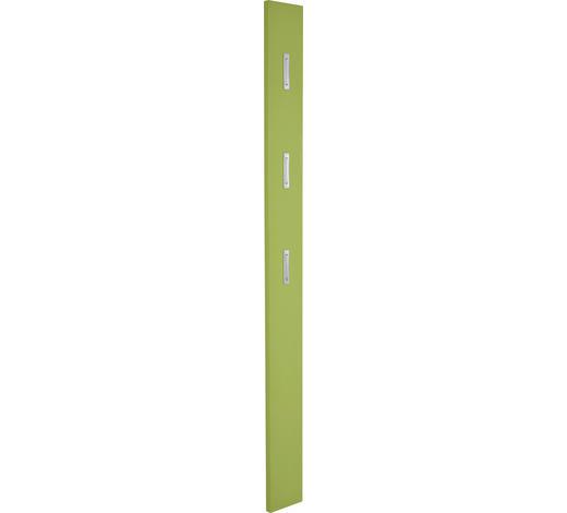 GARDEROBENPANEEL Hochglanz Grün  - Grün, Design (15/170/4cm) - Xora