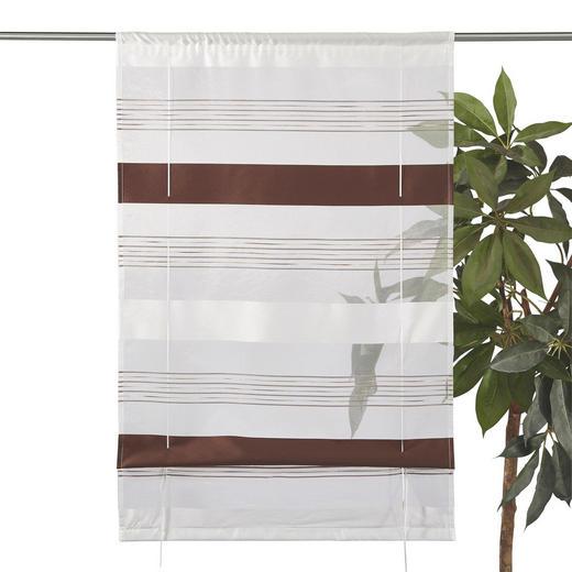 RAFFROLLO  halbtransparent   60/130 cm - Braun, Basics, Textil (60/130cm) - Esposa