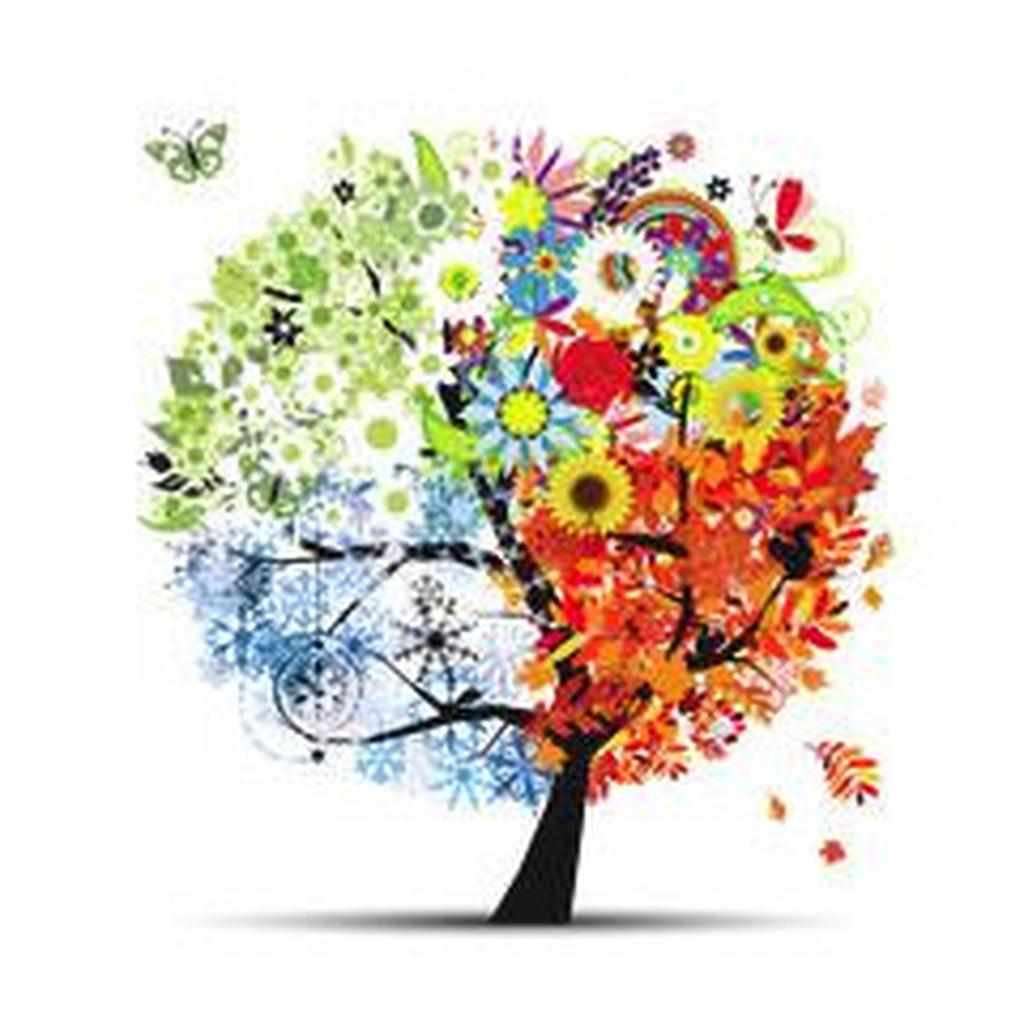 Wandtattoo - Vier-Jahreszeiten-Baum