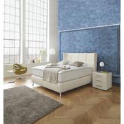 BOXSPRINGBETT 180/200 cm  INKL. Matratze - Alufarben/Weiß, Design, Leder/Metall (180/200cm) - Joop!