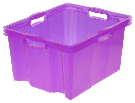 BOX Kunststoff Lila - Lila, Design, Kunststoff (43/23/35cm) - Carryhome