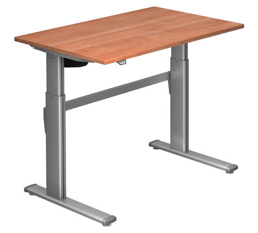 SCHREIBTISCH - Silberfarben/Nussbaumfarben, Design, Holzwerkstoff/Metall (120/72-119/80cm)