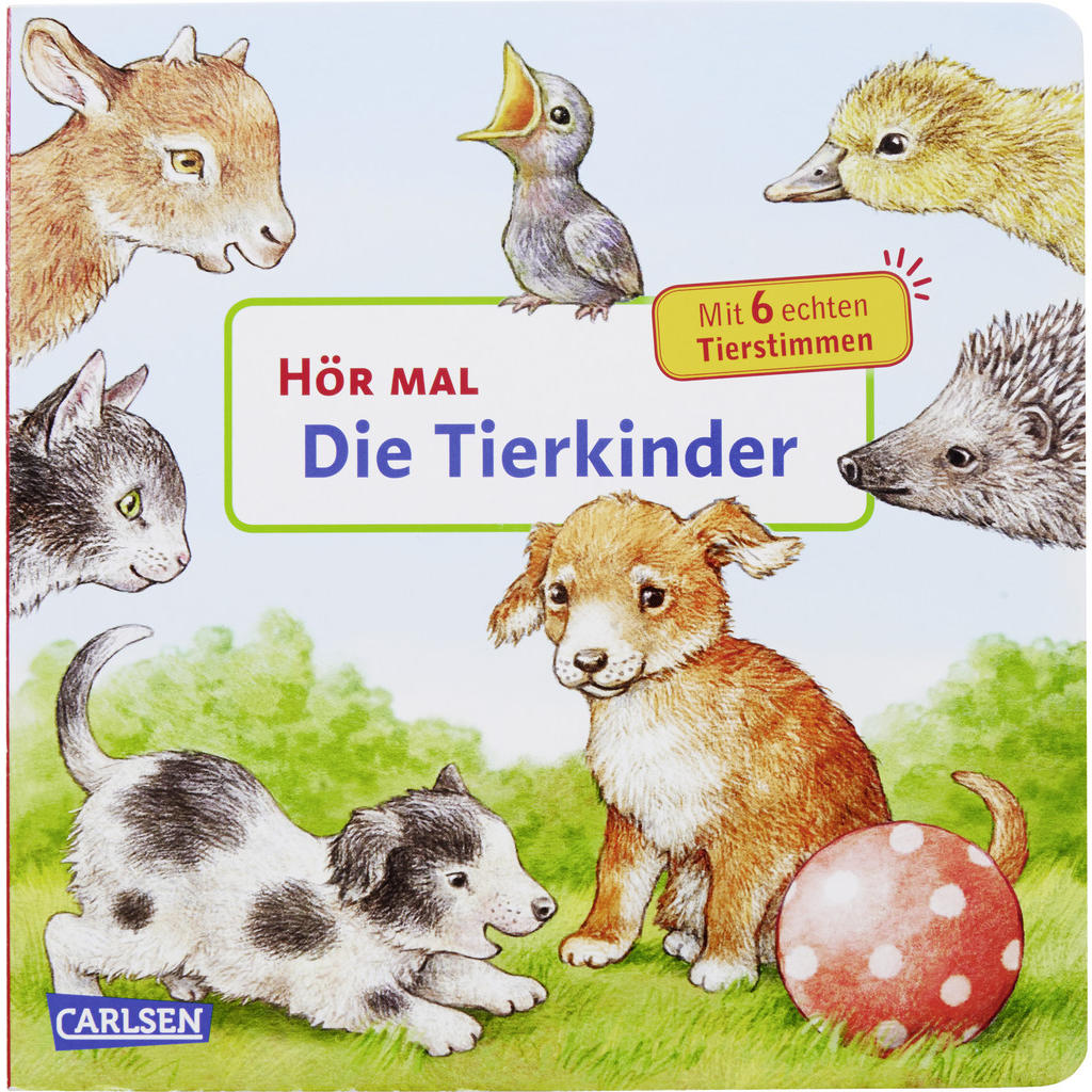 Image of Carlsen Buch , 125046 , Multicolor , Naturmaterialien , 18.1x18.1x2.3 cm , 008614001702