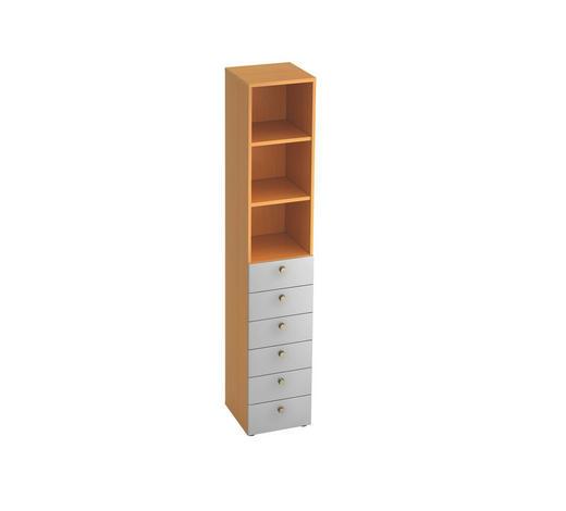 REGAL in Silberfarben, Buchefarben  - Silberfarben/Buchefarben, KONVENTIONELL, Holzwerkstoff/Metall (40/215,6/42cm)