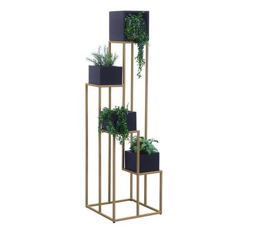 STOJAN NA KVĚTINY, akácie, černá, barvy zlata - černá/barvy zlata, Trend, kov/dřevo (42,5/150/42,5cm) - Lomoco