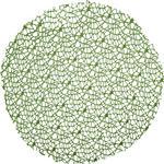 PLATZDECKCHEN Textil  40 cm  - Grün, Trend, Textil (40cm) - Ambia Home
