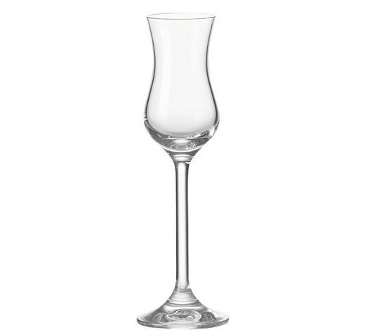 SKLENICE NA DIGESTIV - čiré, Konvenční, sklo (6/20/6cm) - Leonardo