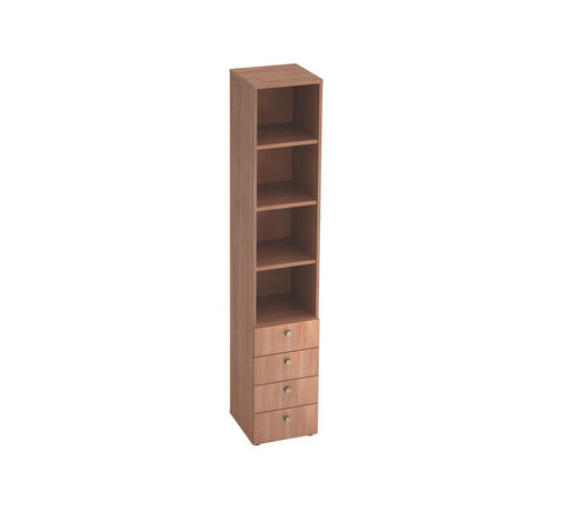 REGAL in Nussbaumfarben - Nussbaumfarben/Alufarben, KONVENTIONELL, Holzwerkstoff/Metall (40/215,6/42cm)