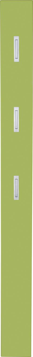 GARDEROBENPANEEL - Grün, Design, Holzwerkstoff (15/170/4cm) - XORA