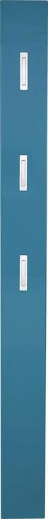 GARDEROBENPANEEL Hochglanz Petrol - Petrol, Design (15/170/4cm) - Xora