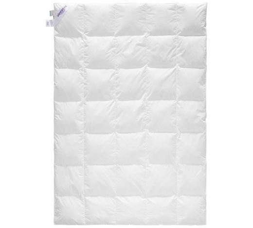 PŘIKRÝVKA ZIMNÍ, 140/200 cm, prachové peří - bílá, Basics, textil (140/200cm) - Sleeptex